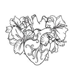 heart with white lilies in romantic style vector image