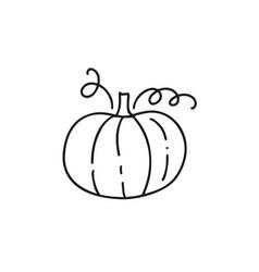Isolated monoline contour pumpkin on white vector