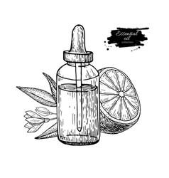 lemon essential oil bottle and lemon fruit hand vector image
