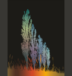 night magic landscape with poplars vector image