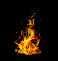 realistic fire on a black background vector image