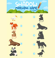 shardow matching game template vector image