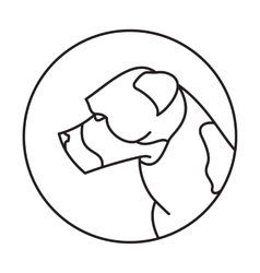 Line head dog american staffordshire terrier vector image