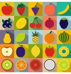 Fruits flat icons vector image