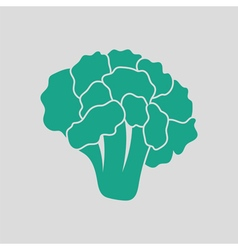 Cauliflower icon vector