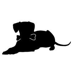 Dog with bone vector image