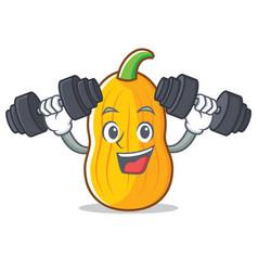 Fitness butternut squash character cartoon vector