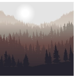 landscape with fir trees vector image