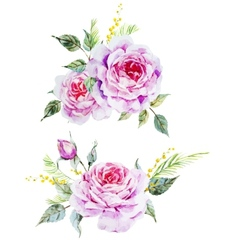 Nice roses vector image