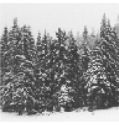 Pine forest in winter landscape nature Vintage vector image