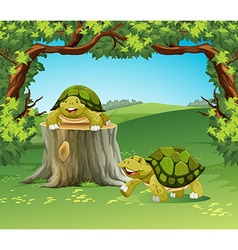Two turtles in the field vector image
