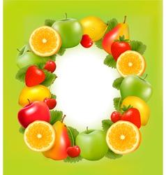 fresh fruit in frame green background vector image