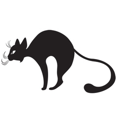silhouette of black cat in profile vector image