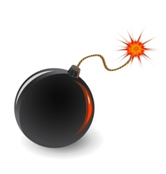 bomb with burning fuse vector image