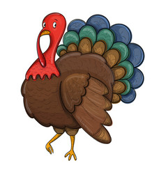sketch turkey on a white background vector image