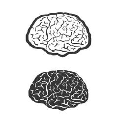 Brain human symbol medicine think icon vector