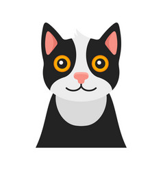 Cat portrait on white background vector