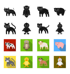 Entertainment farm pets and other web icon in vector