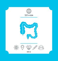 Human organ - the large intestine vector