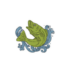 Rockfish swooping up turbulent waters drawing vector