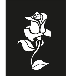 Rose on black vector