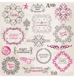 Set Calligraphic Design Elements vector image