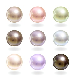 Shinyl pearls set vector image