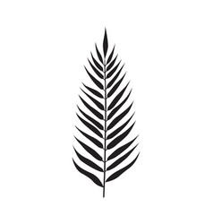 palm leaf element vector image vector image