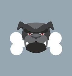 Scary Dog head Angry Bulldog and bone Pet head vector image