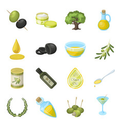 olives tree branch and other products from vector image