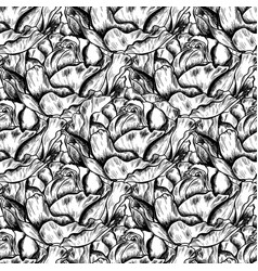 Seamless pattern of highly detailed hand drawn vector
