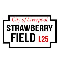 Strawberry field vector
