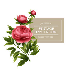 Vintage floral card Used as a greeting vector image vector image