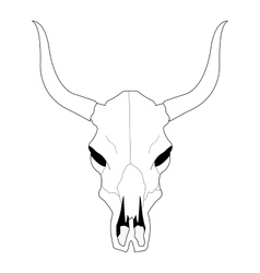 Cow skull with horns Contour vector image vector image