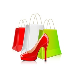 Shopping packages and woman shoes isolated vector image