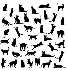 black cat set isolated white background vector image