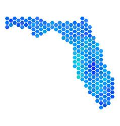 blue hexagon florida map vector image