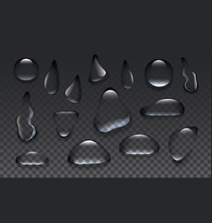 clear transparent water drops isolated on the vector image