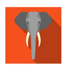 elephant icon in flat style isolated on white vector image