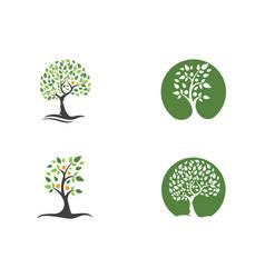 Family tree logo template vector