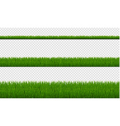 green grass borders isolated transparent vector image
