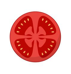 slice tomato isolated on white background vector image