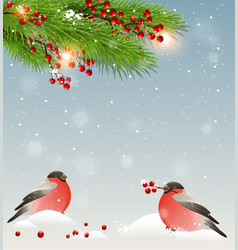 Winter landscape with two bullfinches in snow vector image