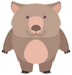 cute wombat with happy face vector image vector image