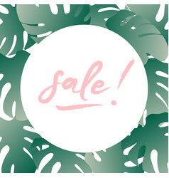 concept of summer sale summer round vector image