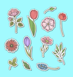 hand drawn flowers stickers set vector image