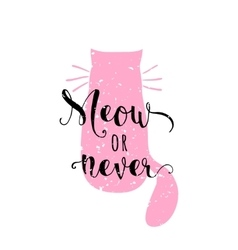 kitten calligraphy sign vector image