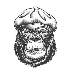 serious gorilla in monochrome style vector image