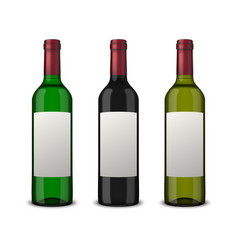 Set 3 realistic bottles of wine with blank vector