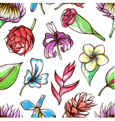 tropical flowers hand drawn color seamless vector image